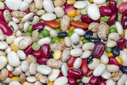 Dieta na Nerki i ich emocje – zalecenia wg medycyny chińskiej