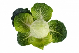 Lecznicze właściwości pożywienia - Kapusta