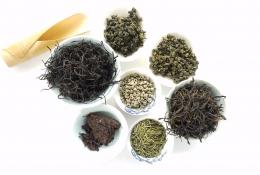 Herbata a starzenie się organizmu